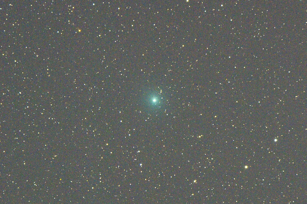 Lovejoy_20141128crop_1024